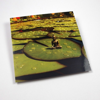 Postcard Waterlily pads - Little Buddhas World